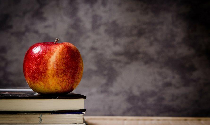5  beneficios de aprender inglés en una academia